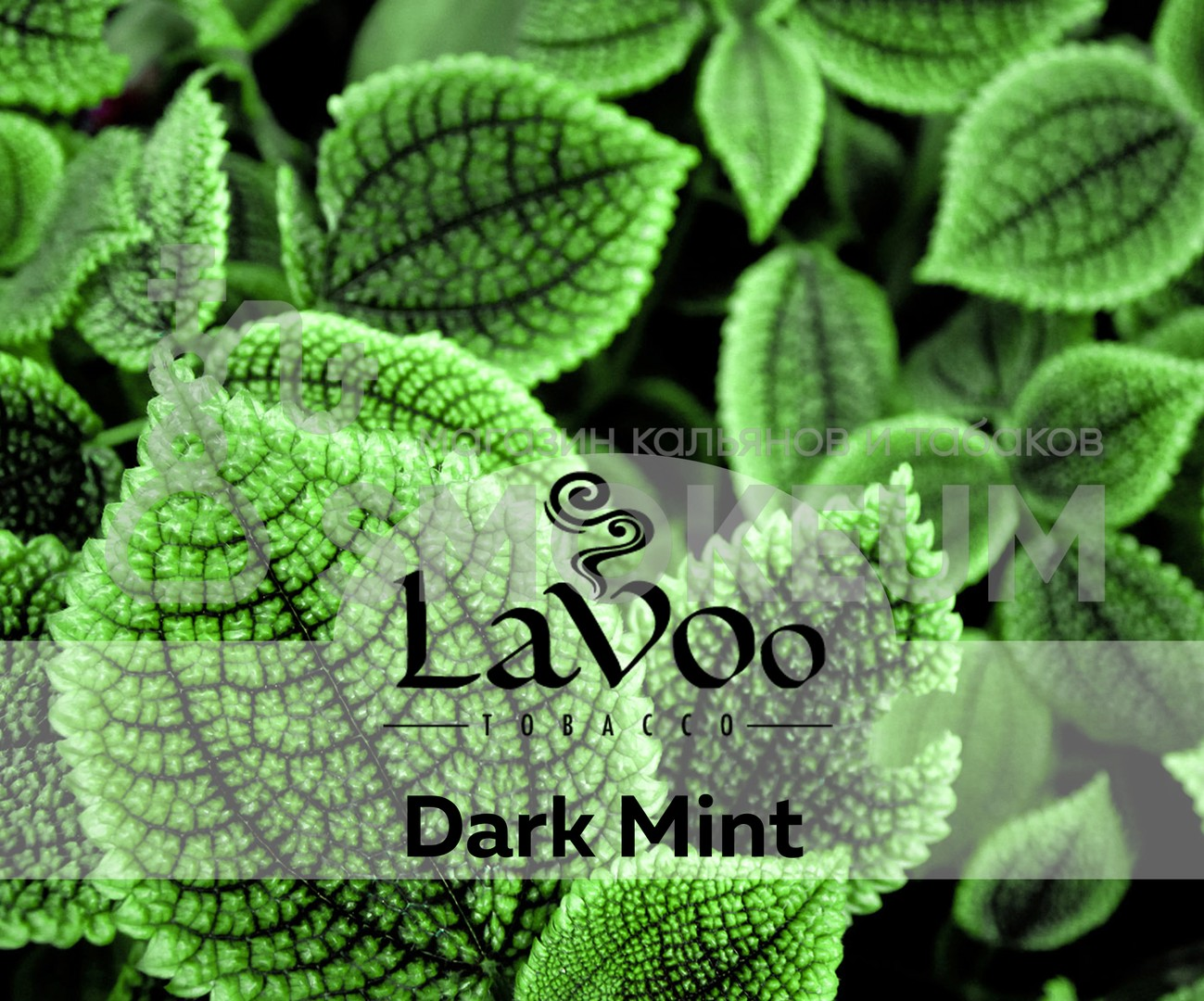 Табак Lavoo - Dark Mint (Мята) 200 гр