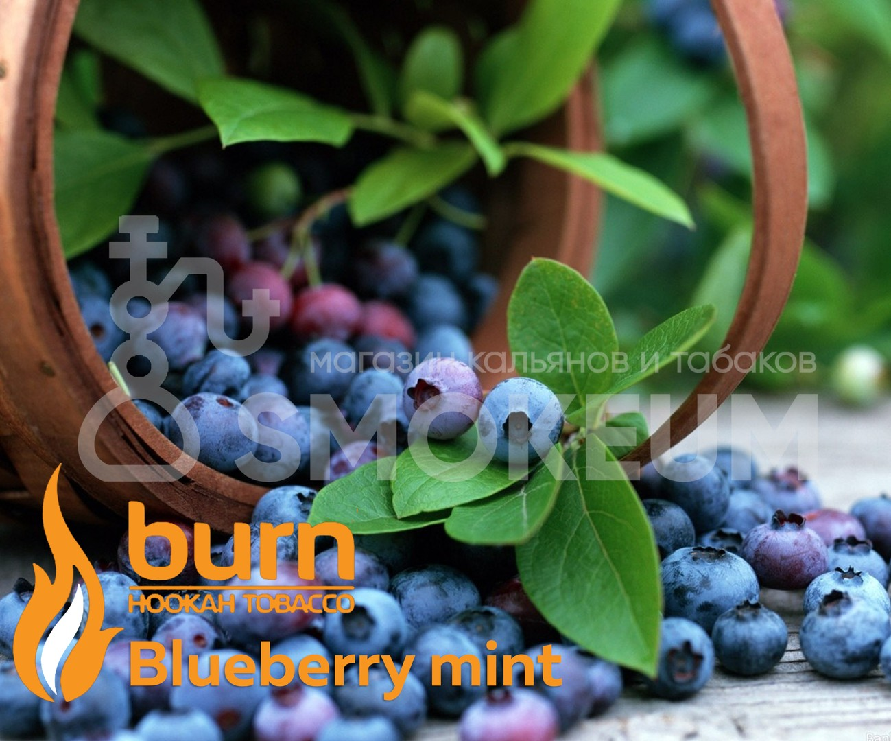 Табак Burn - Blueberry mint (Черника - Мята)