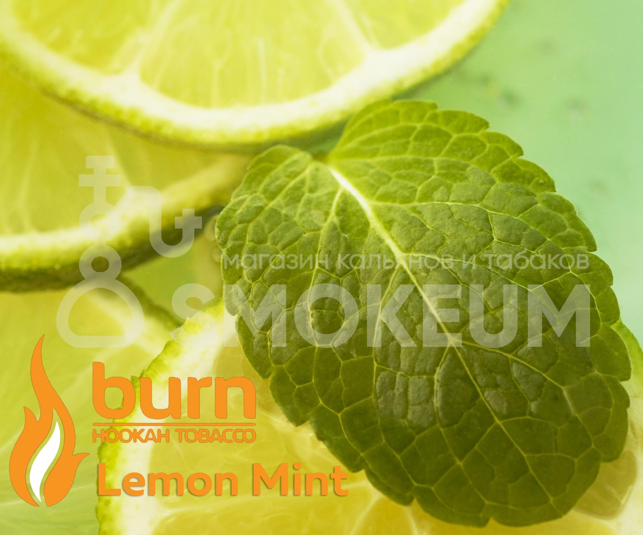 Табак Burn - Lemon Mint (Лимон - Мята)